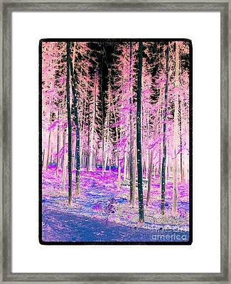 Fantasy Forest Framed Print