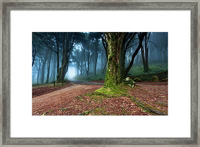 Framed Print featuring the photograph Fantasy by Jorge Maia