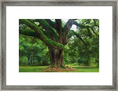 Fantasy Oak Framed Print by Richard Rizzo