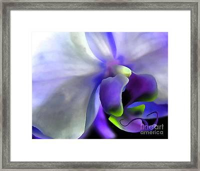 Fantasy Orchid Framed Print by Krissy Katsimbras