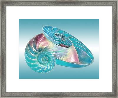 Fantasy Seashells Entwined Framed Print by Gill Billington