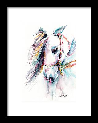Andalusian Framed Prints