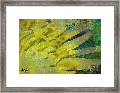 Framed Print featuring the photograph Fantasy by Traci Cottingham