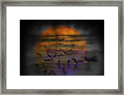 Fantasy Wings Framed Print by Susanne Van Hulst