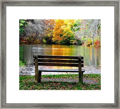 Farewell Autumn Framed Print by Angela Davies