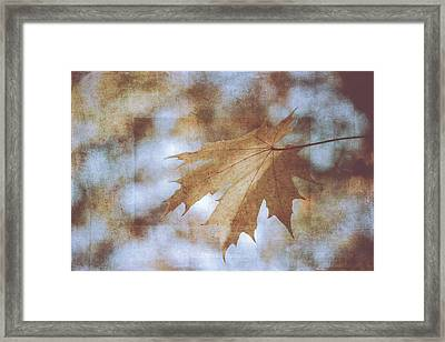 Framed Print featuring the photograph Farewell Summer by Ari Salmela