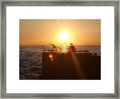 Farewell The Day Framed Print by JAMART Photography