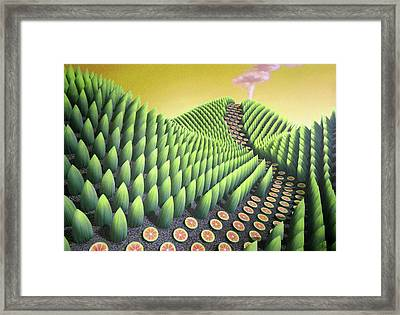 Fargesia Victualia Framed Print by Patricia Van Lubeck
