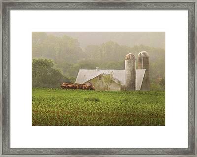 Farm - Farmer - Amish Farming Framed Print by Mike Savad