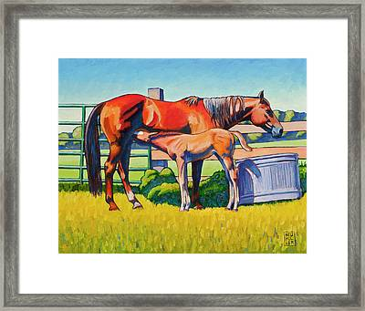 Farm Breakfast Framed Print