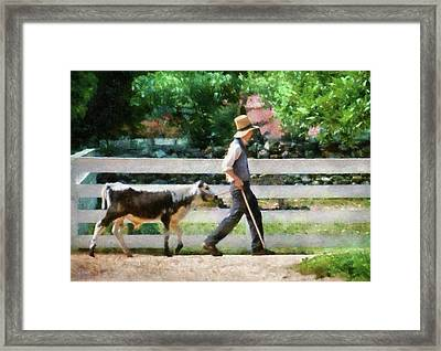 Farm - Cow -the Farmer And The Dell  Framed Print