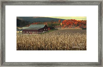 Farm Fall Colors Framed Print by Chuck Kuhn