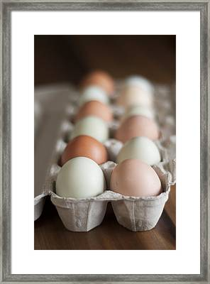 Farm Fresh Eggs Framed Print by Ken Stigler