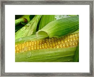 Farm Fresh Framed Print by Gwyn Newcombe