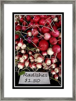 Farm Fresh Radishes Framed Print by Chris Berry