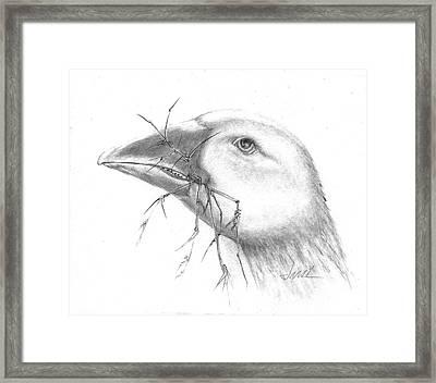 Farm Goose Framed Print