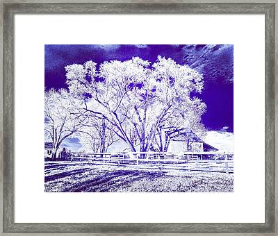 Farm In Suburbia With Wildcat Flare Framed Print