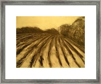 Farm Land Study Framed Print by Jaylynn Johnson