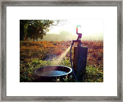 Farm Life 5 Framed Print