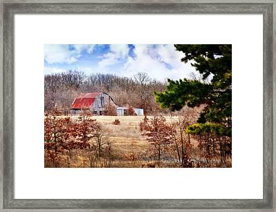 Farm Life Framed Print by Marty Koch