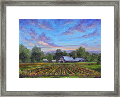 Farm On Glenn Bridge Framed Print
