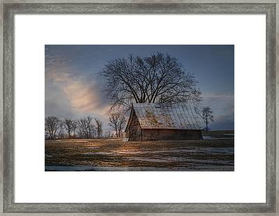 Farm Shed 2016-1 Framed Print by Thomas Young