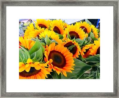 Farm Stand Sunflowers #8 Framed Print by Ed Weidman