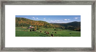 Farm Vt Usa Framed Print