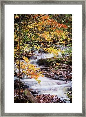 Framed Print featuring the photograph Farmed With Golden Colors by Parker Cunningham