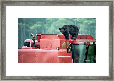 Farmer Bear 8819 Framed Print