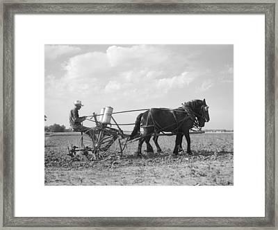 Farmer Fertilizing Corn Framed Print by Arthur Rothstein