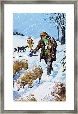 Farmers Bringing In Their Sheep Framed Print by Clive Uptton