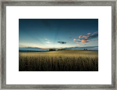 Farmers Field Framed Print by Marvin Spates
