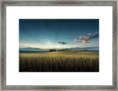Farmers Field Framed Print
