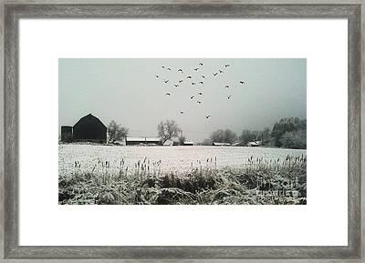 Farmers Landscape Framed Print by Anthony Djordjevic