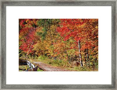 Framed Print featuring the photograph Farmers Path Of Fall Colors by Jeff Folger