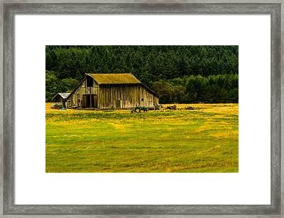 Farming On San Juan Island Framed Print