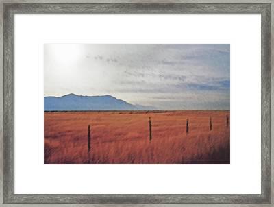Farmland 1 Framed Print by Steve Ohlsen