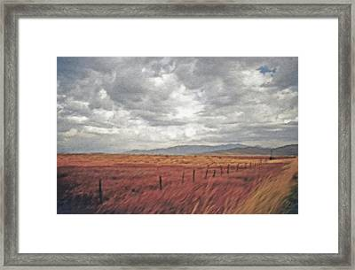 Farmland 2 Framed Print by Steve Ohlsen