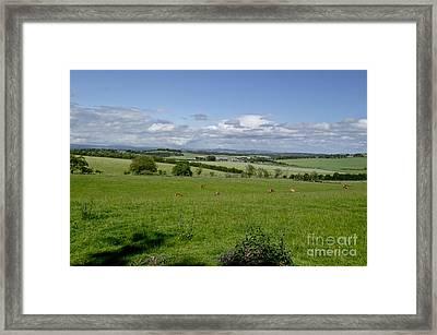 Farmland In Beecraigs. Framed Print