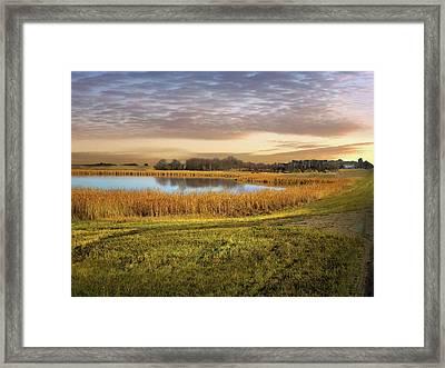Farmland Pond Framed Print