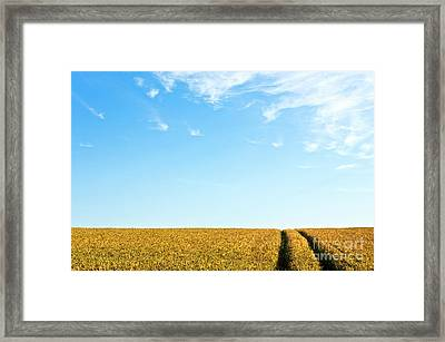 Farmland To The Horizon 1 Framed Print by Heiko Koehrer-Wagner