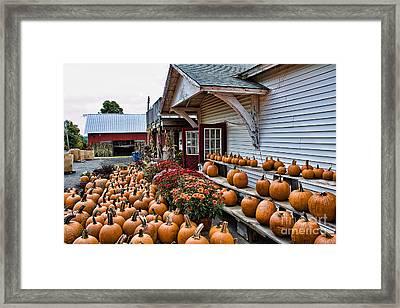 Farmstand Framed Print