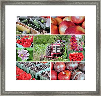 Farmstand Offterings Framed Print by Janice Drew