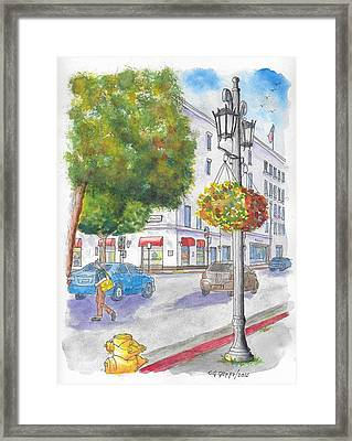 Farola With Flowers In Wilshire Blvd., Beverly Hills, California Framed Print by Carlos G Groppa