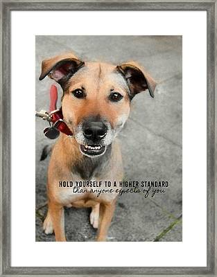 Farrahs Smile Quote Framed Print by JAMART Photography