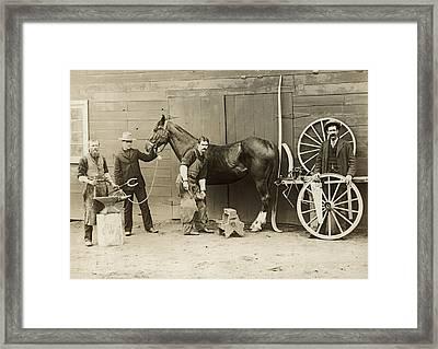 Farrier Shoeing A Horse Framed Print