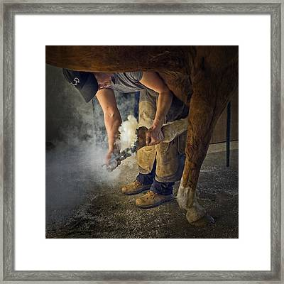 Farrier Visit - 365-46 Framed Print