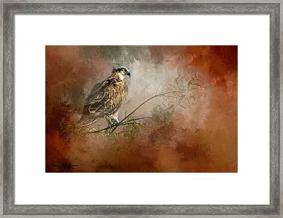 Farsighted Wisdom Framed Print