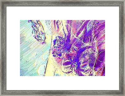 Fases Framed Print by Gustavo Moller